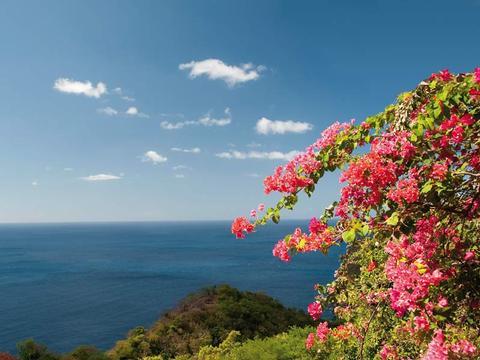 Östliche Karibik - ab/bis Ft. Lauderdale