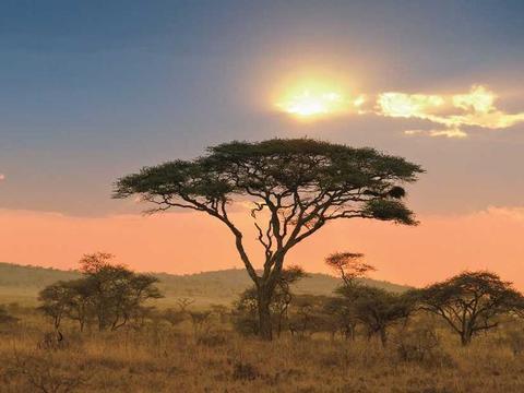Weihnachten & Silvester in der Sonne Südafrikas