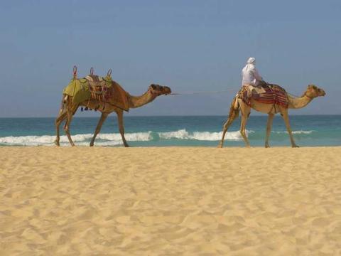 Schätze des arabischen Golfs ab Maskat (Oman)
